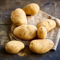 Pomme de terre Monalisa Bio (à tout faire)