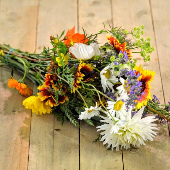 Bouquet Zinnia