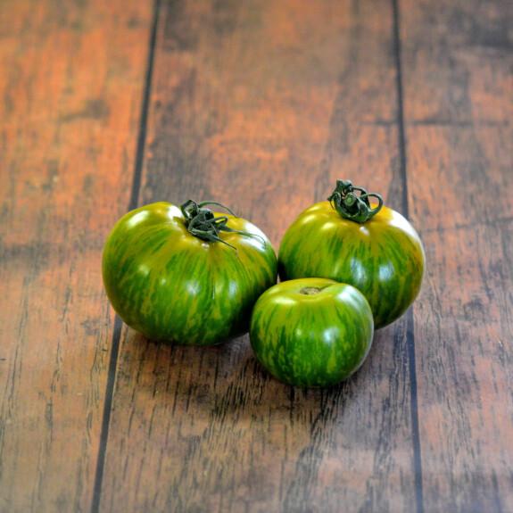 Tomate ancienne bio