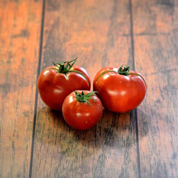 Tomate ronde Bio