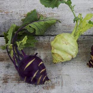 Choux rave violet Bio